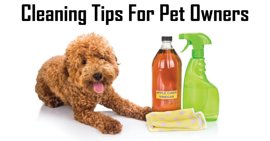 cleaning-with-pets