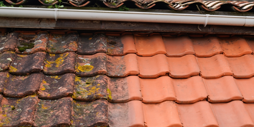 Split image of roof tile before and after professional roof cleaning.
