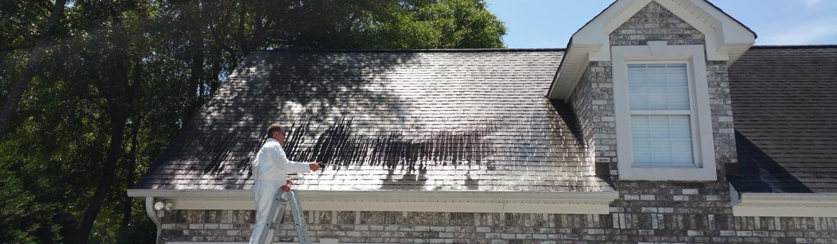 Draper Roof Wash Window Genie Of Franklin Tn