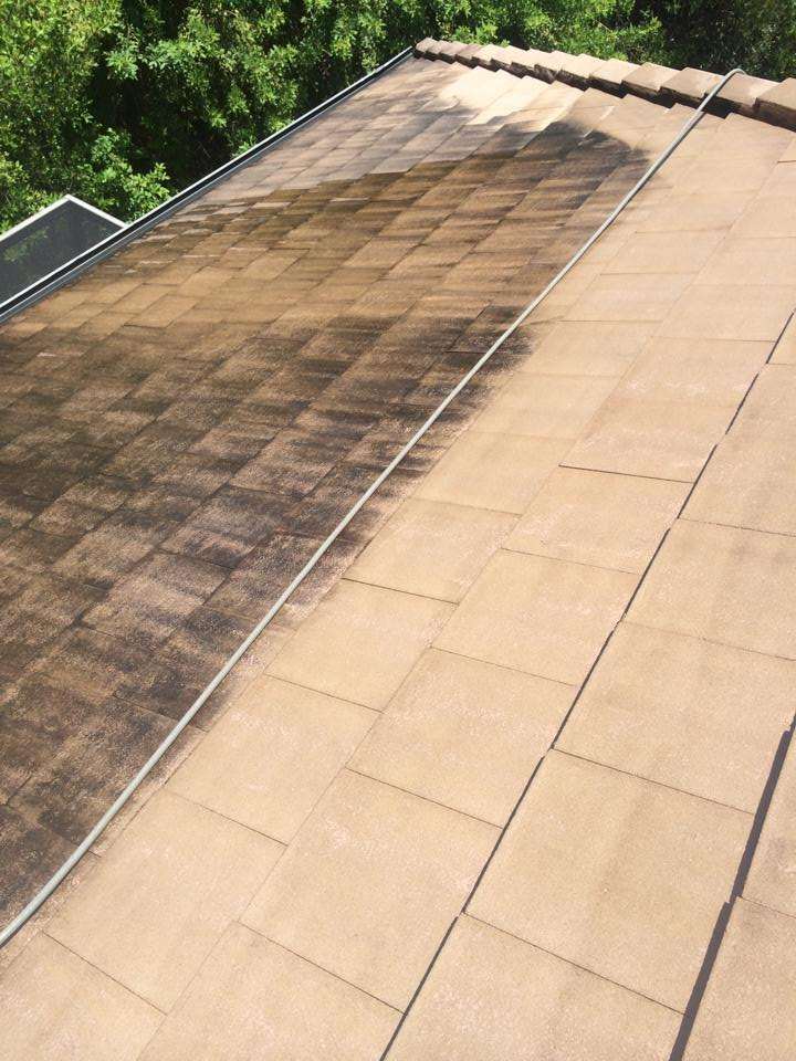 roof washing, roof cleaning