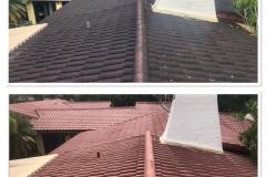 miami roof soft washign pros