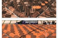 miami roof washing window genie