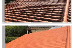 pressure free soft roof washing miami