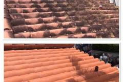 pro roof washing window genie miami
