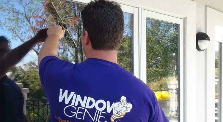 Professional window cleaning services on exterior plate windows